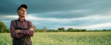 Bail à ferme, agriculteur pensif dans son champ