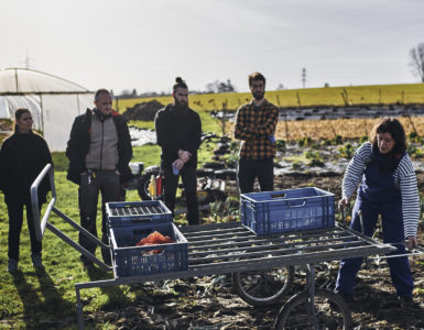 Agriculture : stop à la démesure technologique. Sur cette photo, la kabalèze... Une charrette haute de transport conçue pour les maraîchers.