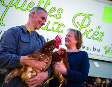 Depuis que Daniel Collienne et son épouse Suzanne Desmidt ont médiatisé leur acquisition de poulaillers mobiles, ils sont régulièrement contactés par des agriculteurs qui s'intéressent à ce système d'élevage.